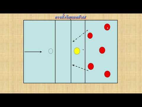 ครูเสือEp.6 ตำแหน่งการยืนกีฬาวอลเล่ย์บอล