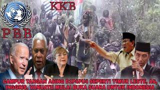 CAMPUR TANGAN ASING DI PAPUA SEPERTI TIMUR LESTE, AS, INGGRIS, VANUATU MULAI BUKA SUARA DI INDONESIA