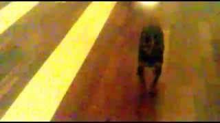 Пес перешел на темную сторону.