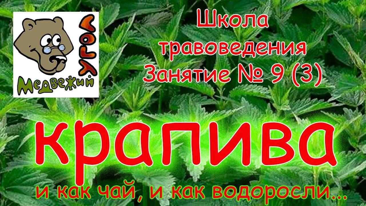 Грушевый Тарт с Козьим Сыром и Кедровыми Орехами    iCOOK GOOD on .