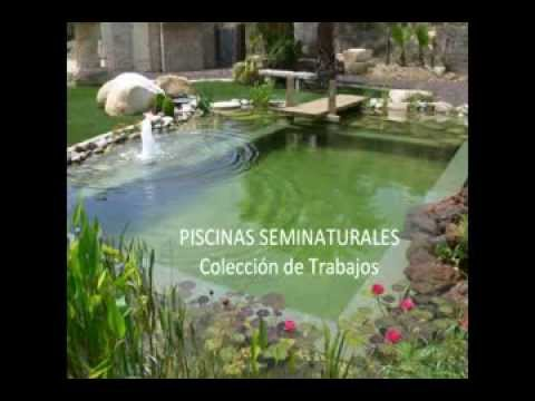 Piscinas seminaturales youtube for Piscinas bio naturales