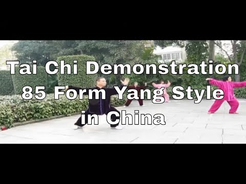 Tai Chi Instructor and Group 85 Form Yang style Taijiquan 杨式太极拳