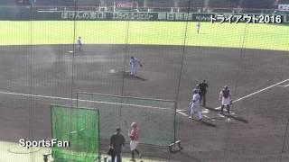 プロ野球合同トライアウト2016、甲子園球場で開催。前巨人DeNAの香月良...
