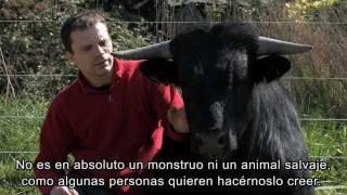 Fadjen - Pablo Knudsen - 2011 [SUBTÍTULOS ESPAÑOLES]