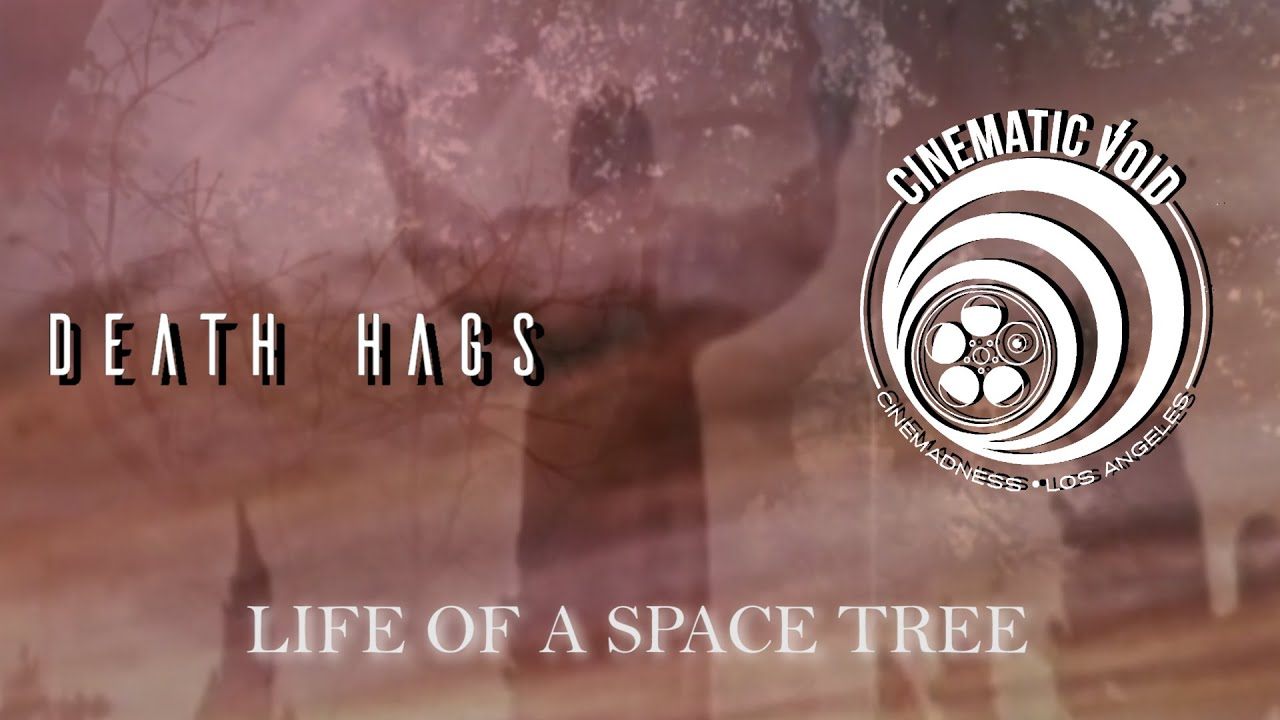 Cinematic Void x Death Hags: LIFE OF A SPACE TREE - New Audio/Visual Mix Is Out Now!