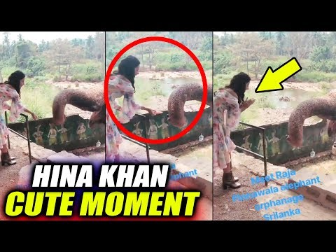 Hina Khan Having Fun With Elephant In Sri Lanka | Rocky Jaiswal