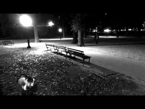 Central Park in The Dark (A short film dedicated to Charles Ives)