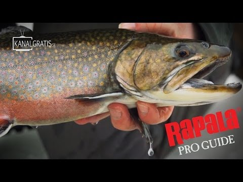 Rapala Pro Guide | Ice Fishing for Rainbow Trout