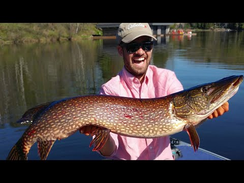 Northern Pike Fishing In Ontario -- Spring Pike 2018