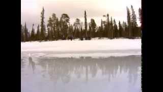 Ах, ця зимова риболовля!