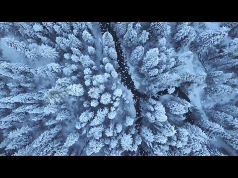 Solanik - Seven Seas bedava zil sesi indir