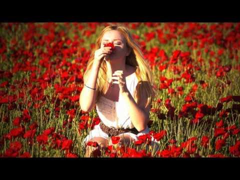 David Vendetta feat. Rachael Starr - Bleeding Heart (Vocal Mix)