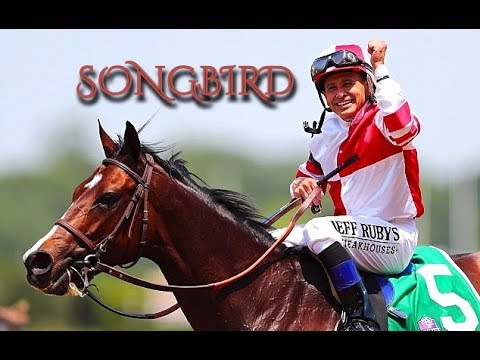 Songbird~ Edit
