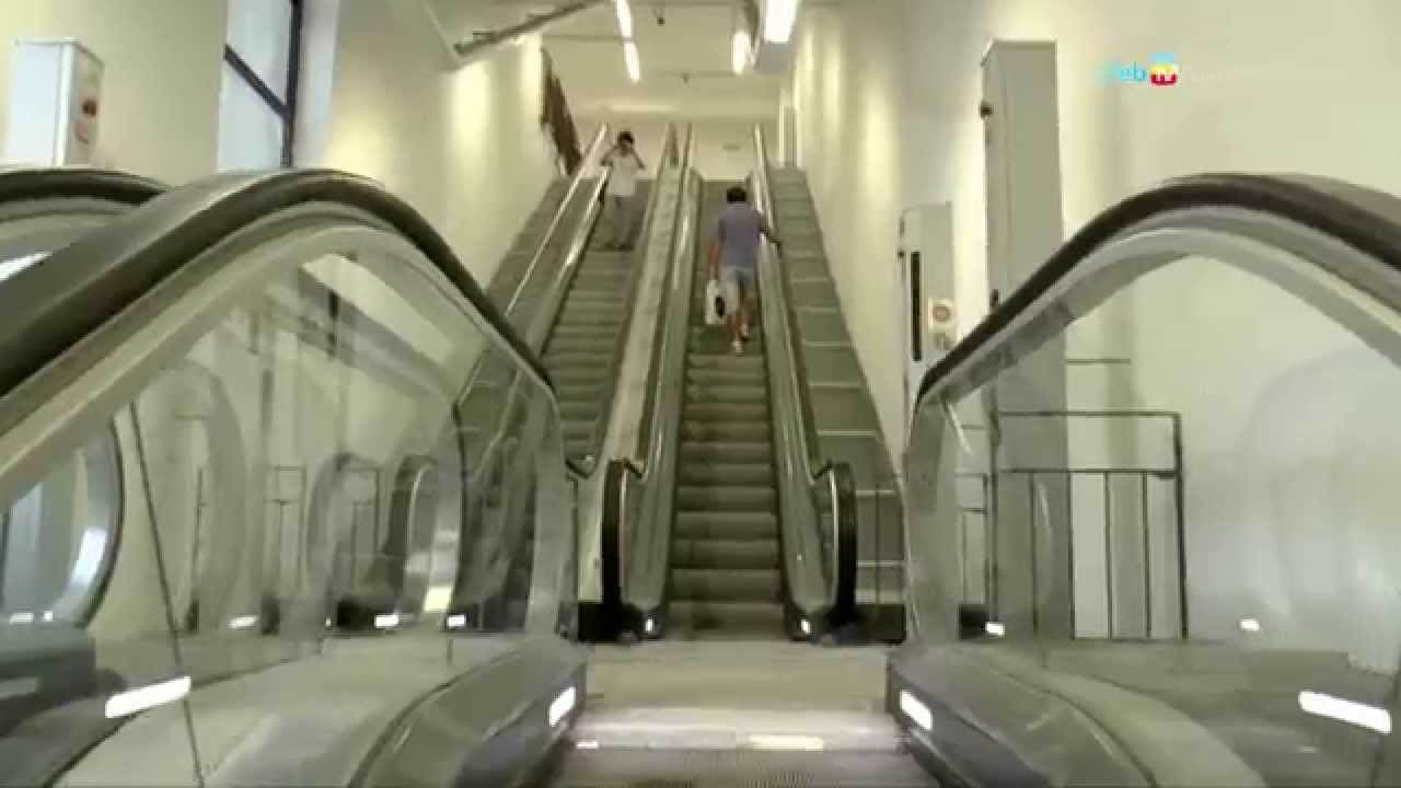 Parco ventaglieri in funzione scale mobili e ascensore - Sognare scale mobili ...