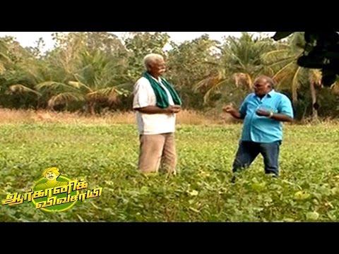 Organic Vivasayi - Farmer Subbu | 12 Mar 2017