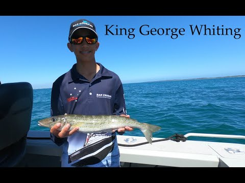 How To Catch BIG King George Whiting, Perth Western Australia