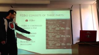 """TD Imágen Biomédica 2013 """"Análisis de Elementos Finitos para Imágenes Biomédicas: FEBio"""""""