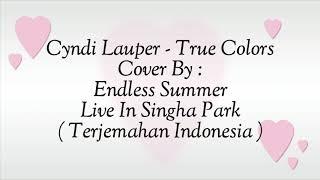 Cyndi Lauper - True Colors - Lyrics ( terjemahan Indonesia )