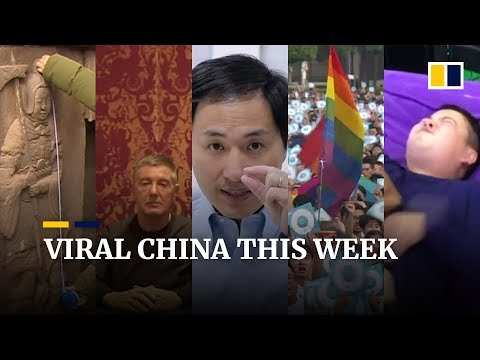 Viral China this week: Fathers can't take the pain of childbirth, D&G founders apology and more