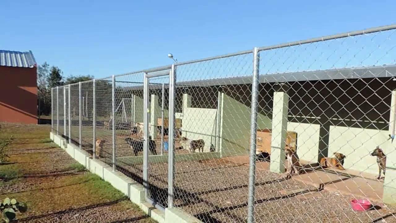 OPAA entrega instalações do Canil Municipal de Alegrete - YouTube