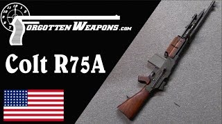 Colt R75A: The Last Commercial BAR (With Shooting)