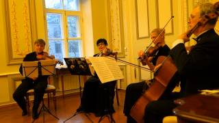 Музыка из фильма Запах Женщины и Правдивая Ложь. Танго. Симфонический оркестр.
