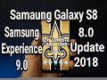 Samsung Galaxy S8 8.0 Oreo Update Is HERE | Samsung Experience 9.0 | First 24 Hour Review