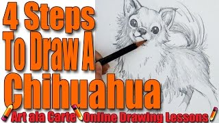 Draw a Chihuahua in 4 Steps