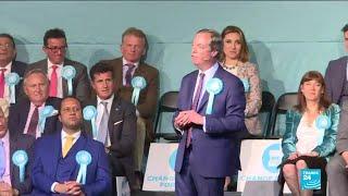 Européennes : Nigel Farage en tête dans les sondages