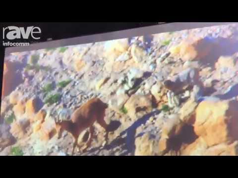 InfoComm 2017- EliteProAV™ Exhibits Dry-Erase Whiteboard Screen