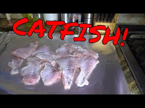 SDSBBQ - TIps And Tricks For Frying Catfish Nuggets