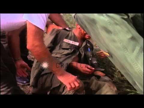 Medics seated around an injured soldier in Vietnam during the Vietnam War. HD Stock Footage