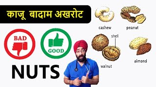 Nuts are Healthy or Not   काजू…