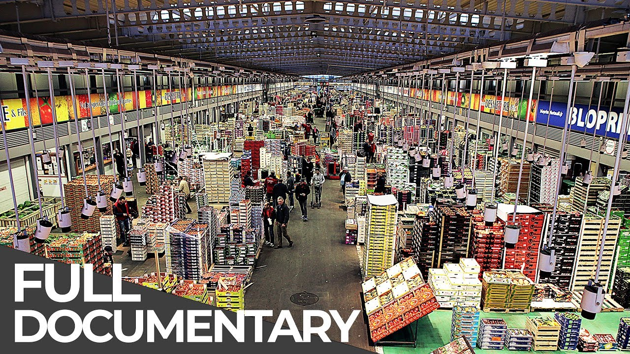 Giant Food Market: Rungis Paris   Giant Hubs   Episode 5   Free Documentary