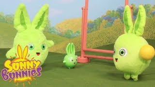 Toyplay for Children | SUNNY BUNNIES - DOUBLE TROUBLE | Funny Cartoons For Children