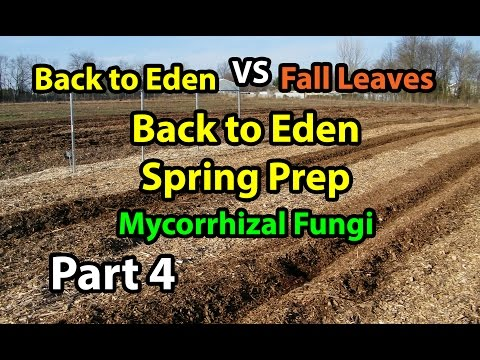 Back to Eden Organic Gardening 101 Method with Wood Chips VS Leaves Composting Garden Series Part 4