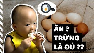 Món ĂN DẶM với TRỨNG   Trẻ ĂN DẶM nên ăn bao nhiêu TRỨNG   Gợi ý món ăn dặm cho bé