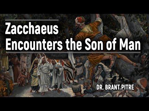Zacchaeus' Story