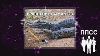 видео Самара Caiman V4 BF RDA clone