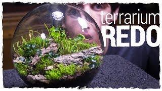 No Opening Terrarium Redo!