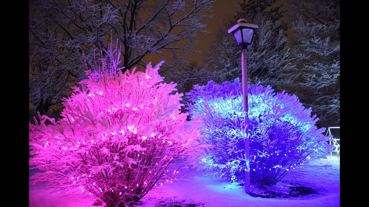 Tpa Park Christmas Lights 2021 Winter Wonderland Through Tpa Park Under Fresh Fallen Snow Clinton County Daily News