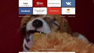 настраиваем подключение к прокси-серверу на Яндекс и Хром после вируса