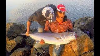 Balık Günlükleri Kanalının Yeni İntrosu