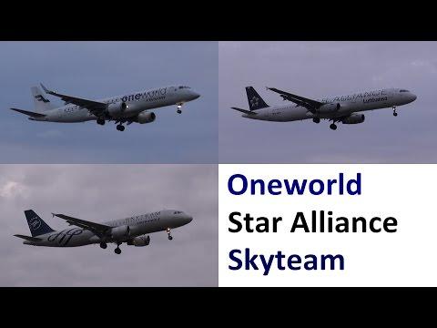 3 airline alliances logojet landings in Berlin TXL