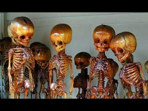 Thousand of Fairy and Giant Graves Discovered in America Guests Gary Wayne Chad Riley Now You ...