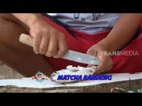 MATCHA  BANDENG | JEJAK SI GUNDUL (16/02/21) - Видео онлайн