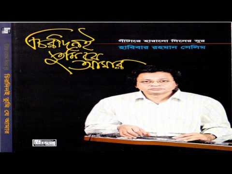 Aaj Ei Dintake Moner Khatai Likhe Rakho Instrumental