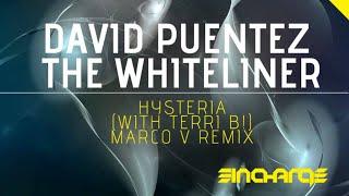Скачать David Puentez The Whiteliner With Terri B Hysteria Original Mix HD HQ