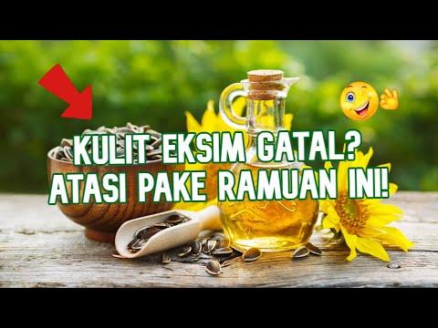 obat-eksim-gatal-mujarab-menggunakan-minyak-biji-bunga-matahari