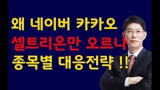 [주식]왜 네이버 카카오 셀트리온만 오르나 종목별 대응…